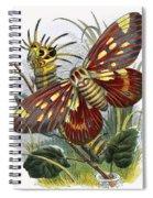 The Butterfly Vivarium Spiral Notebook