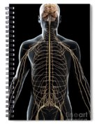 The Nerves Of The Upper Body Spiral Notebook