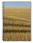 Tracks In Field Spiral Notebook