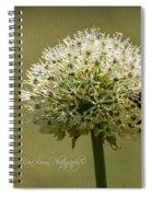 6337a Spiral Notebook