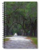 Allee Of Live Oak Tree's Spiral Notebook
