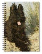 Briard Dog Spiral Notebook