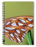 Gulf Fritillary Butterfly Spiral Notebook
