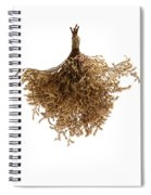 Hanging Dried Flowers Bunch Spiral Notebook