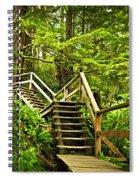 Path In Temperate Rainforest Spiral Notebook