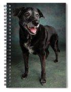 Portrait Of A Labrador Golden Mixed Dog Spiral Notebook