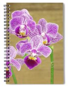 Purple Orchid Spiral Notebook