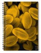 Sem Of Grass Pollen Spiral Notebook