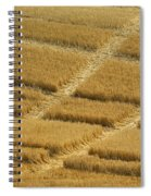 Tracks In Field Spiral Notebook