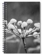 Winter Flowers Spiral Notebook