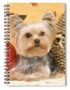 Yorkshire Terrier Dog Spiral Notebook