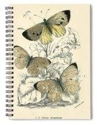 Butterflies Spiral Notebook