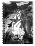 Washington D Spiral Notebook