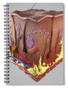 Anatomy Of Human Skin Spiral Notebook