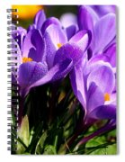 Crocus Spiral Notebook