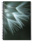 Dandelion Close-up View Backlit Spiral Notebook