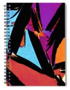 Graphitic Granulite Spiral Notebook