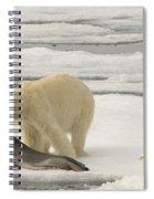 Polar Bear With Fresh Kill Spiral Notebook