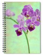 Purple Orchid-11 Spiral Notebook