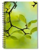 Spring Green Spiral Notebook