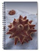 Virus Particles Spiral Notebook