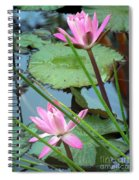 Pink Water Lily Pond Spiral Notebook