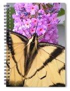 #859 D480 Swallowtail 2010.jpg Spiral Notebook