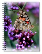 American Painted Lady Butterfly Spiral Notebook