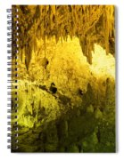 Carlsbad Cavern Spiral Notebook