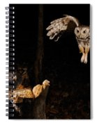 Eastern Screech Owl Spiral Notebook
