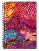 Myrmekite Spiral Notebook