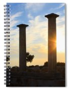 Temple Of Apollo Hylates Spiral Notebook