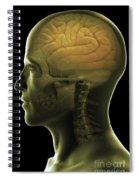 The Human Brain Spiral Notebook
