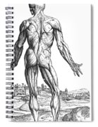 Vesalius: Muscles, 1543 Spiral Notebook