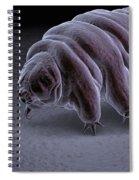 Water Bear Tardigrades Spiral Notebook