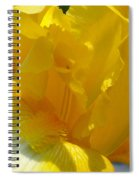 Yellow Iris 2 Spiral Notebook