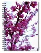 9582 Spiral Notebook