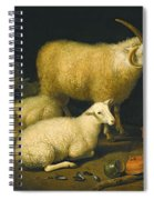 A Barn Interior With A Four-horned Ram And Four Ewes And A Goat Spiral Notebook
