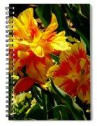 A Beautiful Fire Spiral Notebook