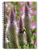 A Bee's Work Is Never Done Abwndp Spiral Notebook