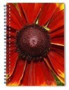 A Big Orange And Yellow Flower Spiral Notebook