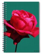 A Big Red Rose Spiral Notebook