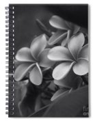 A Blessing Spiral Notebook