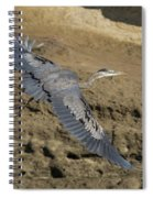 A Blue Heron Flying Spiral Notebook