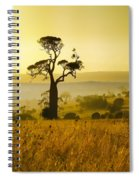A Boab Sunrise Spiral Notebook