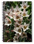 A Bouquet Of Miniature Tulips Celebrating The Spring Season - Vertical Spiral Notebook