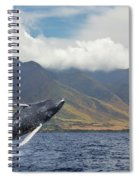 A Breaching Humpback Whale  Megaptera Spiral Notebook