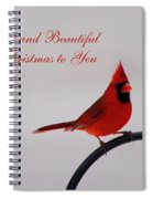A Bright And Beautiful Merry Christmas To You Spiral Notebook