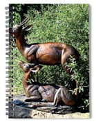 A Buck And His Doe Spiral Notebook