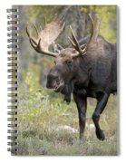 A Bull Moose Named Gaston Spiral Notebook